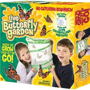 Bon Amazon Is Offering Insect Lore Live Butterfly Garden ...