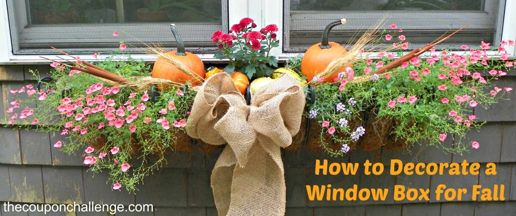 How to Decorate a Window Box