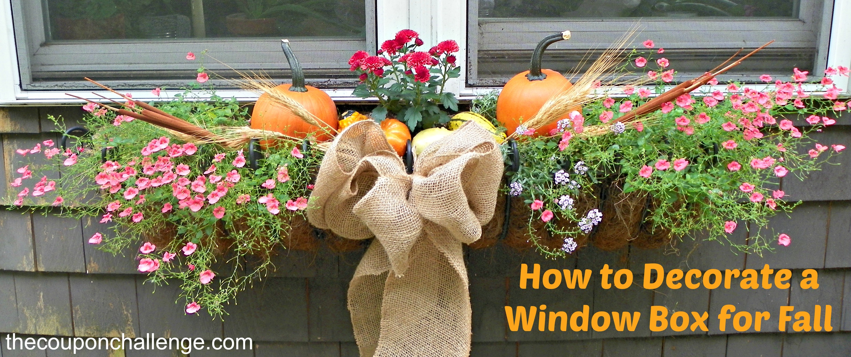 Fall window boxes - How to decorate with spring flowers ...