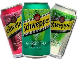 RARE* $1 00/1 Schweppes Ginger Ale Coupon! ONLY $ 50 each at