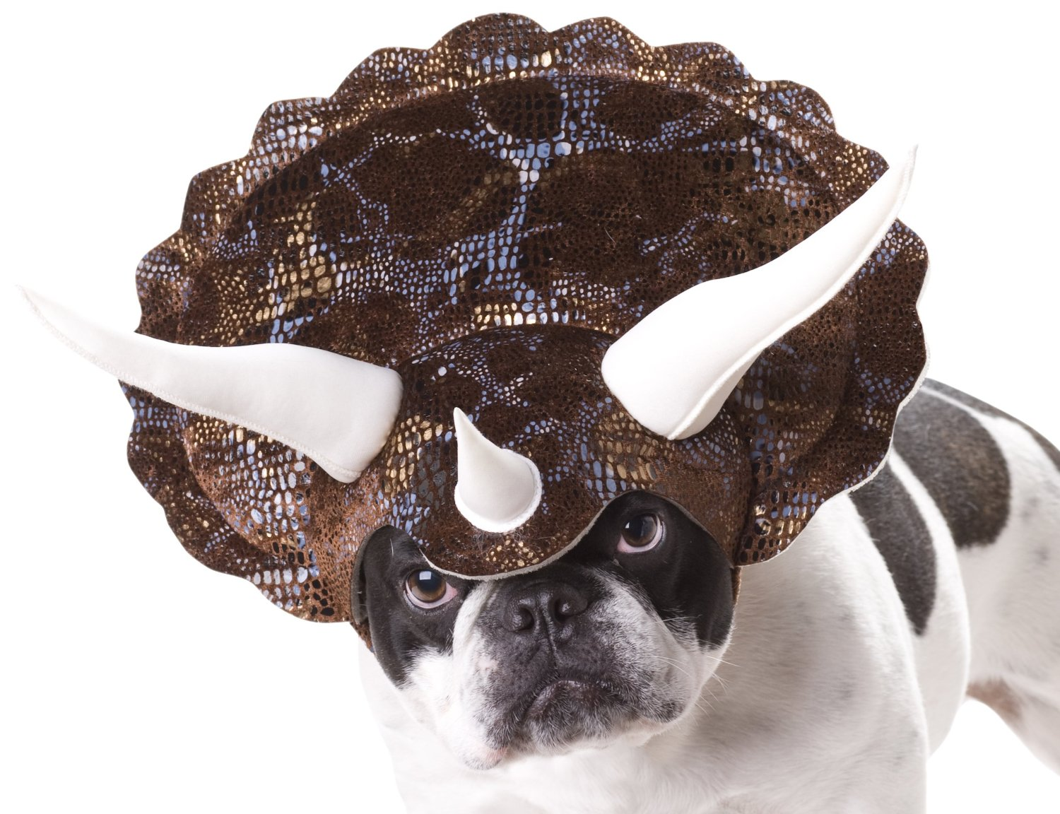 Amazon: Dog Halloween Costumes-Starting At $8.32! - The Coupon ...