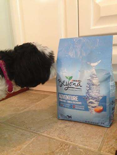Beyond® Adventure Grain Free dog food 2