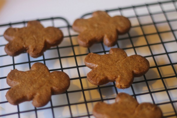 gingerbread baby cool